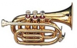 mednye-dukhovye-instrumenty-truba_1_.jpg