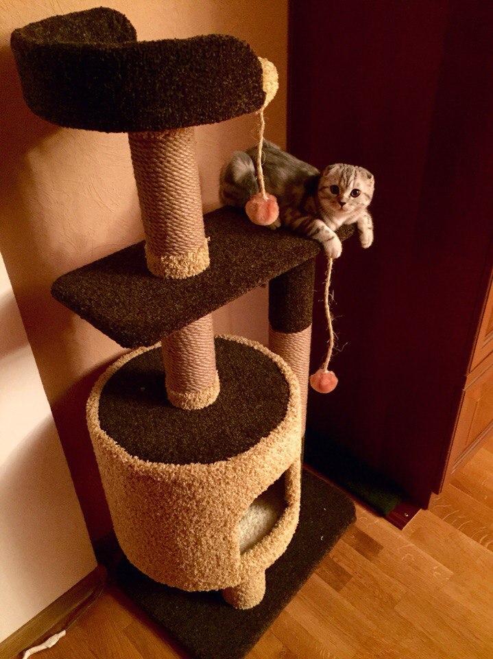 Когтеточка для кошек своими руками пошагово 58