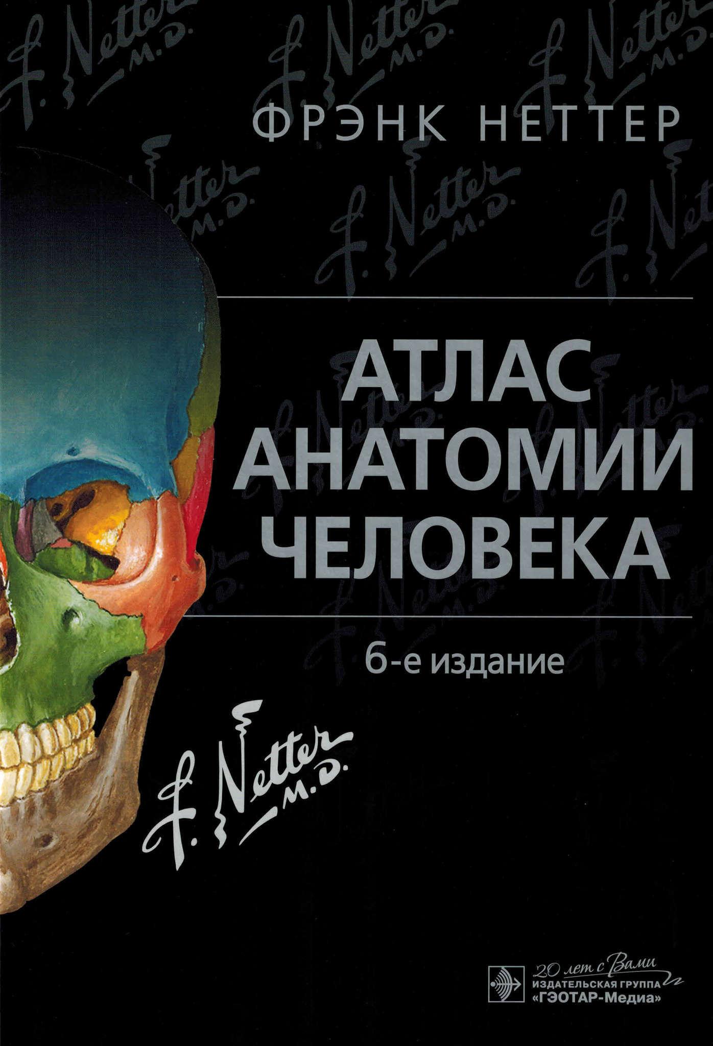 Атлас Анатомии Человека Фрэнк Неттер Отзывы