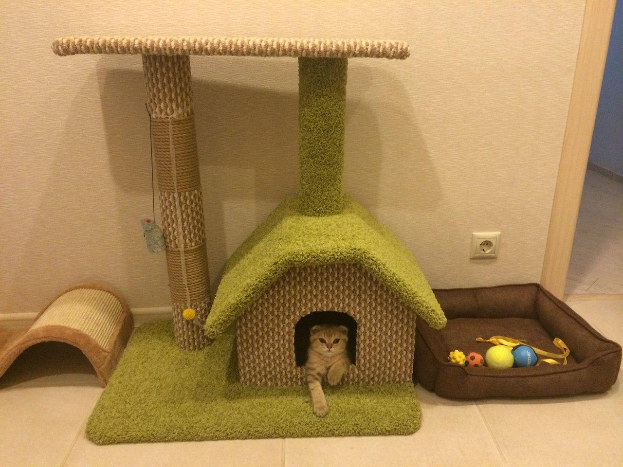 Маленькие домики своими руками для котов