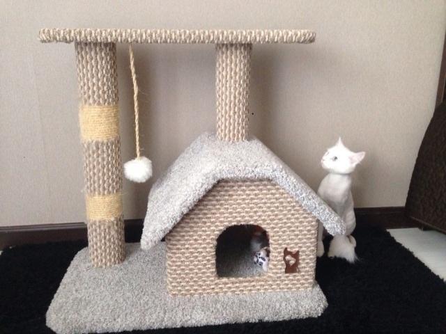 Домик для крупной кошки чертежи