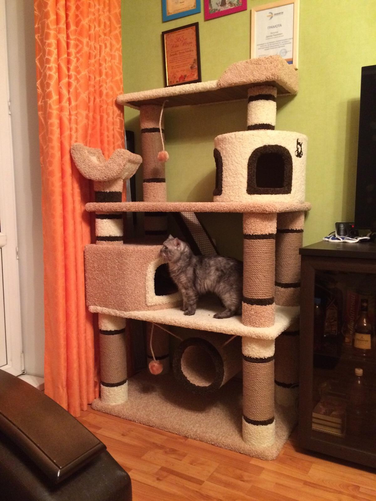Многоуровневый кошачий домик своими руками 82