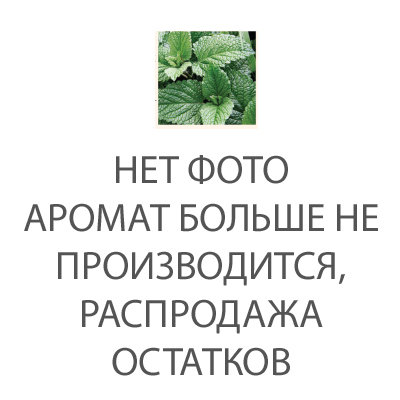 Аромат для ламп Дикая мята 500 мл (Ароматы для Аромаламп)Ароматы для Аромаламп<br>Свежий энергичный вихрь цветущих трав – душистой мяты и бодрящего базилика создают этот освежающий аромат, разбавленный ноткой лаванды и завершающим шлейфом теплых нот мускуса и апельсина.<br>Правила обращения с продукциейAshleigh&amp;Burwood<br>