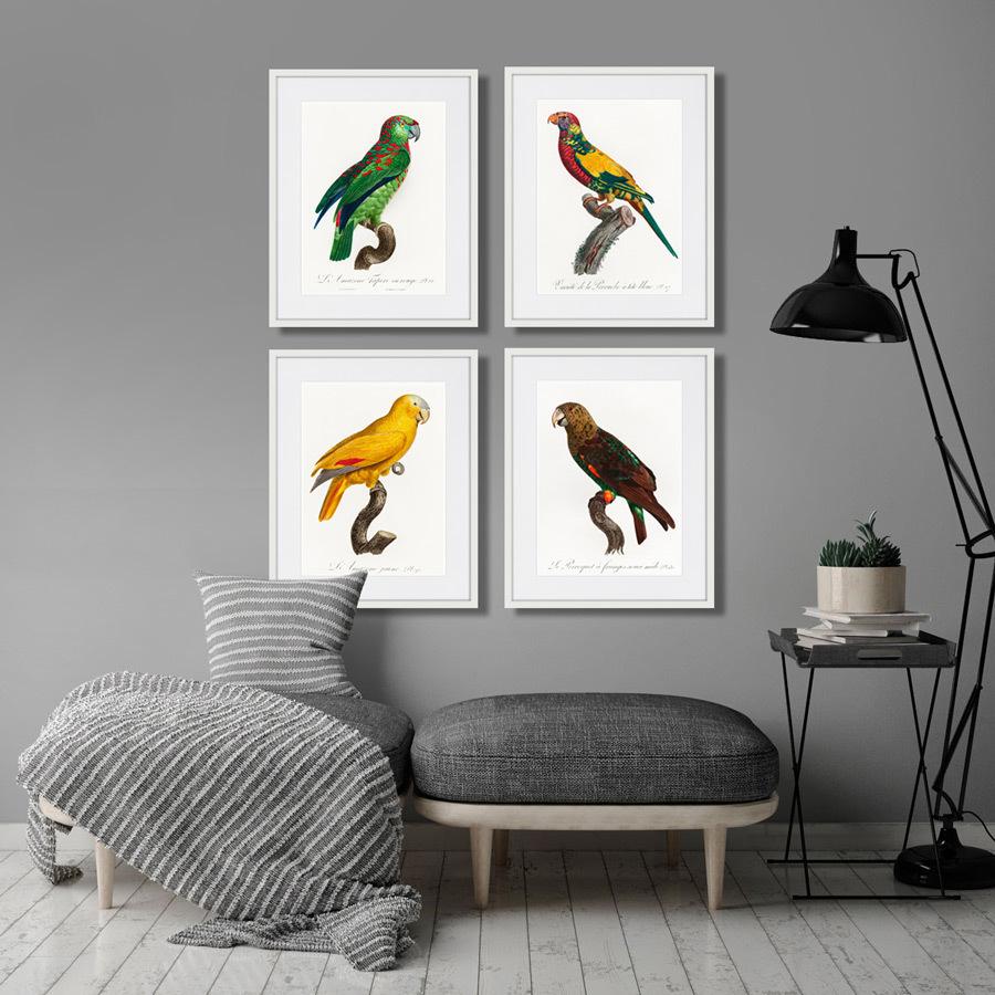 Beautiful parrots №1, 1872г.