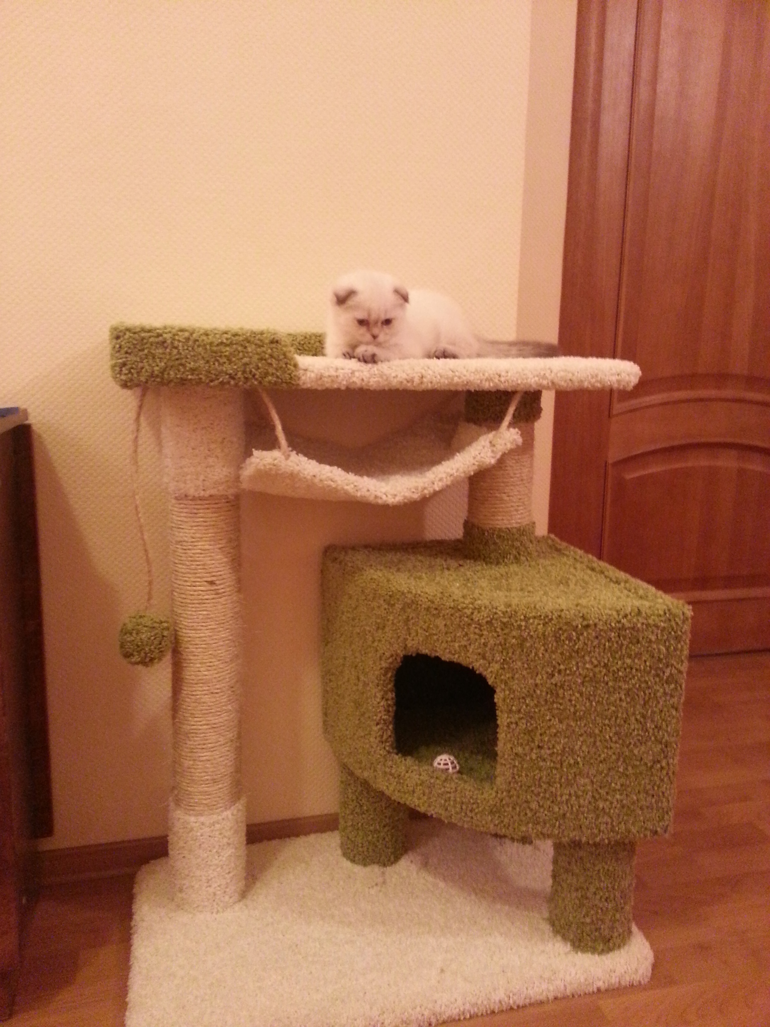 Как сделать домик для кошки самому