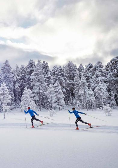 одежда_для_лыжного_спорта1.png