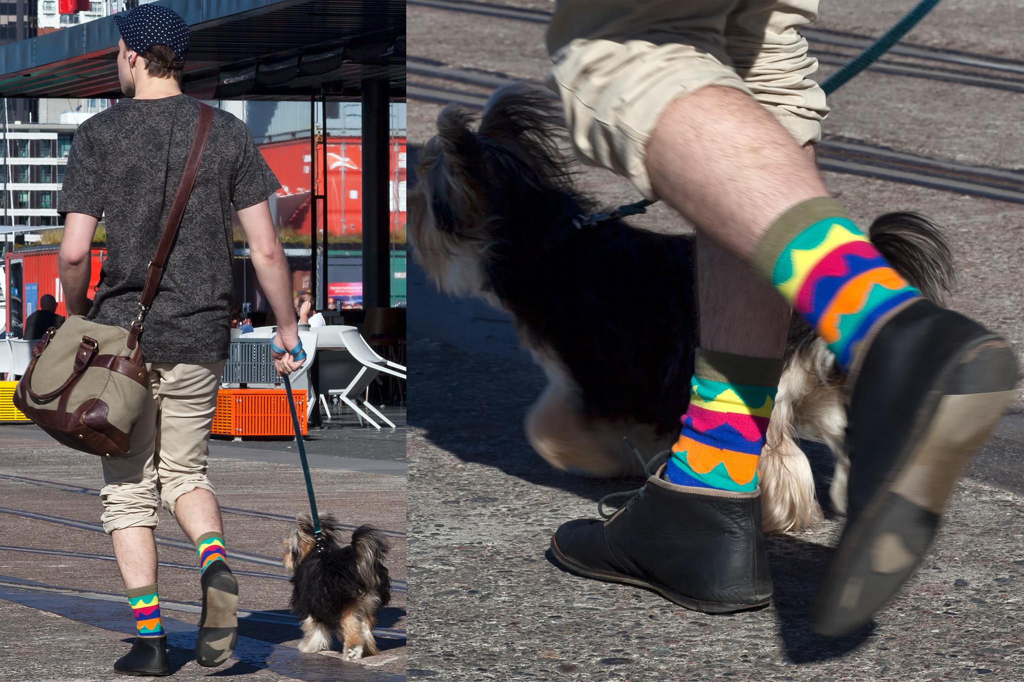 Хипстер в ярких цветных носках