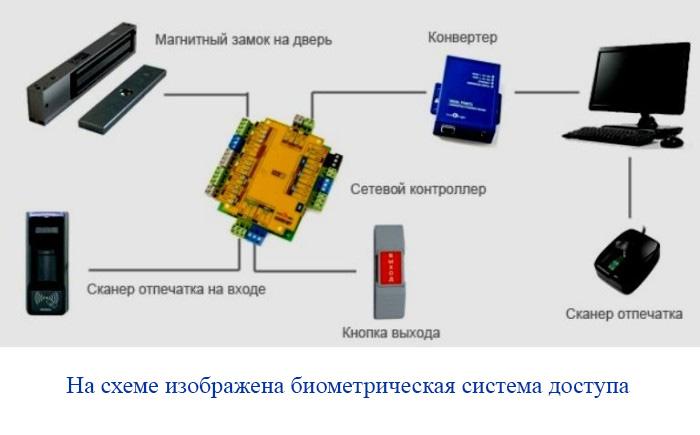 На схеме изображена биометрическая система доступа