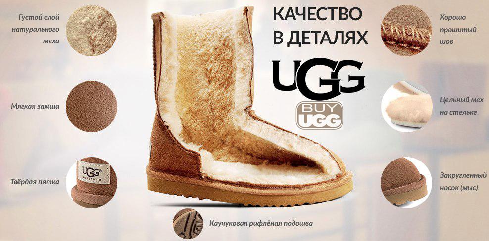 UB.jpg