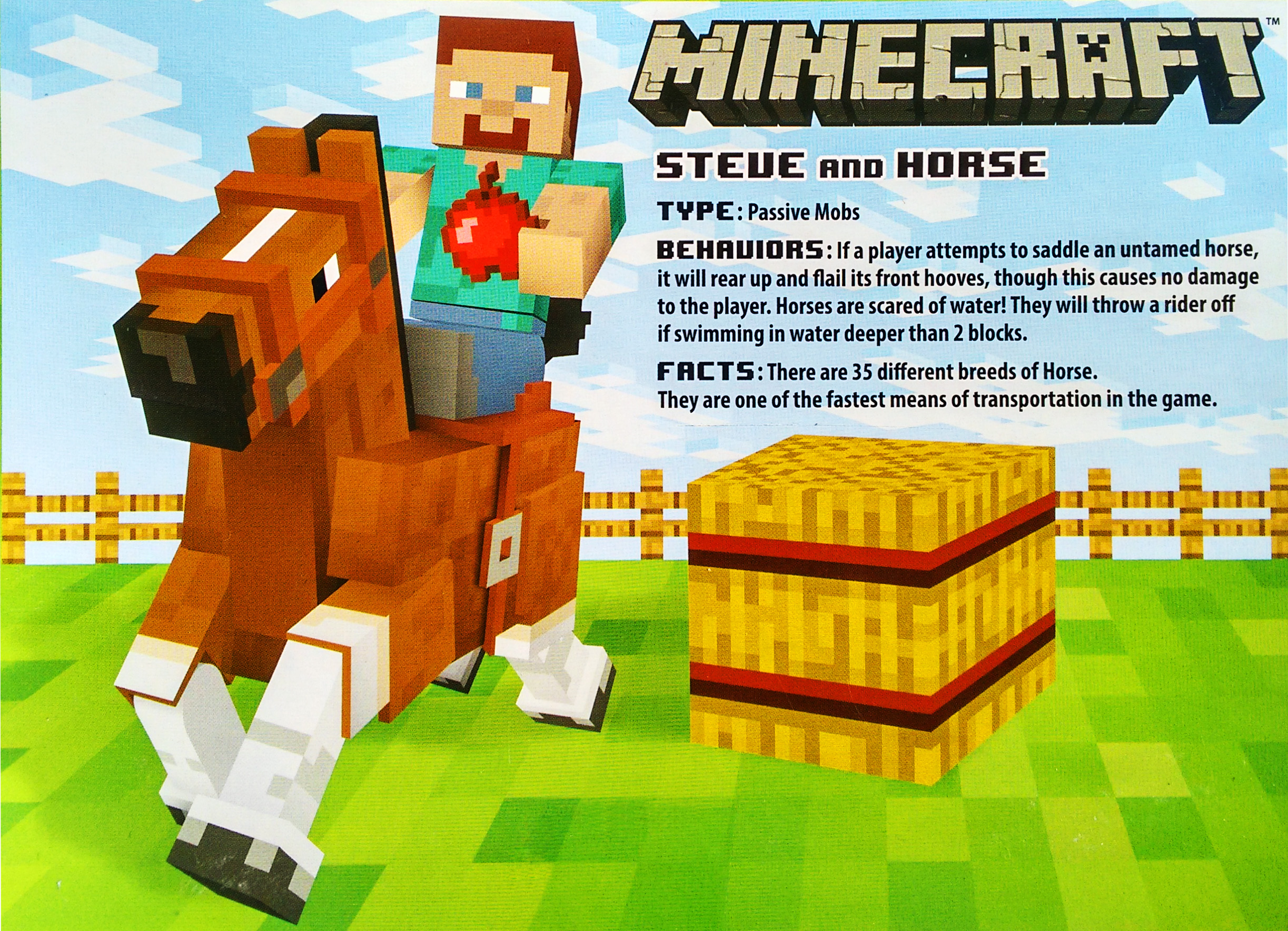 Steve_with_Chestnut_Horse