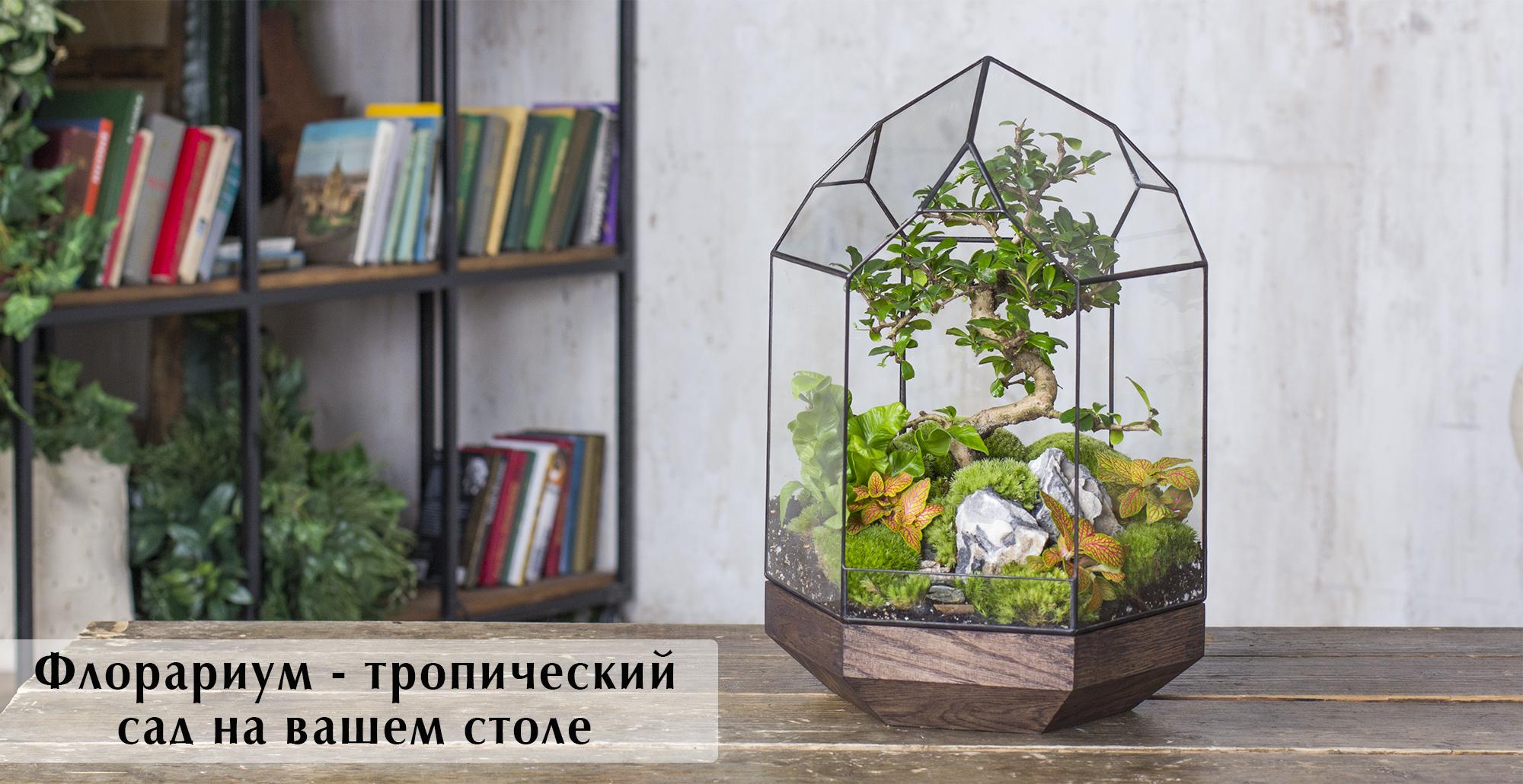 Слайд_главный