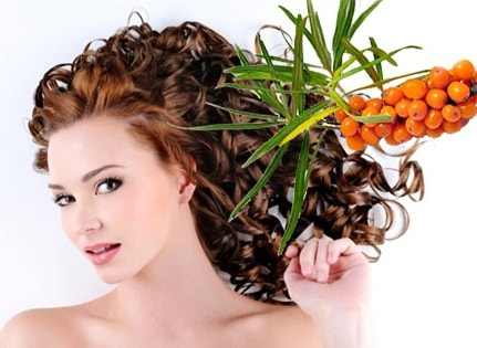 Применение облепихи в уходе за волосами