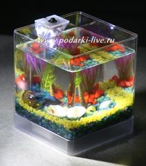 Маленький аквариум на стол  спб