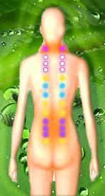 backmassagepointsgreen1.jpg