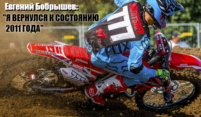 bobryshev-2015-1.png
