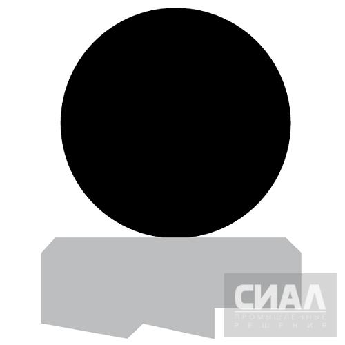 Профиль_уплотнение_штока_RS09.png