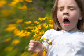 аллергия1.jpg