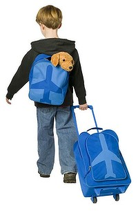 Выбираем чемодан для сезона отпусков