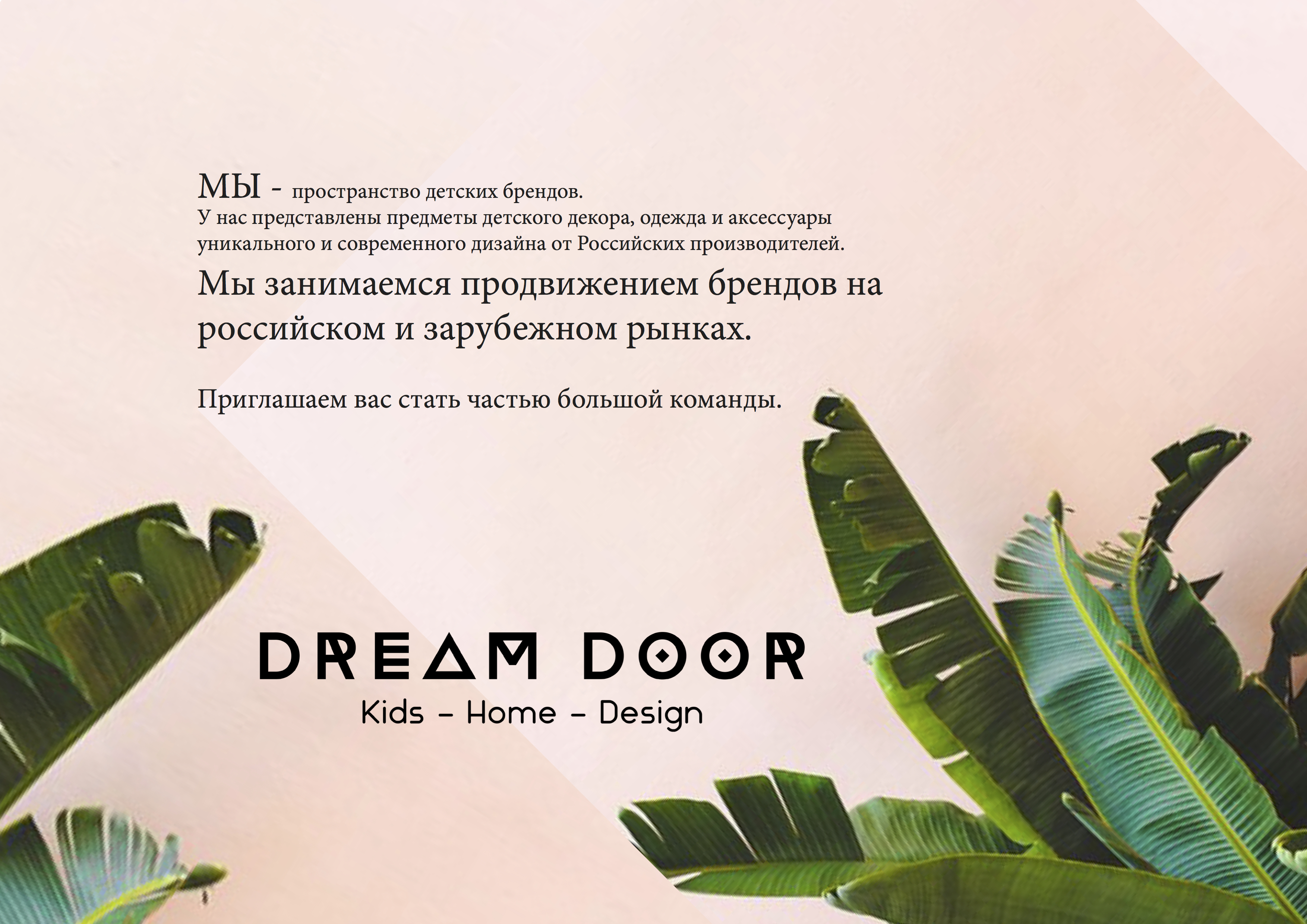 presentationDD.jpg