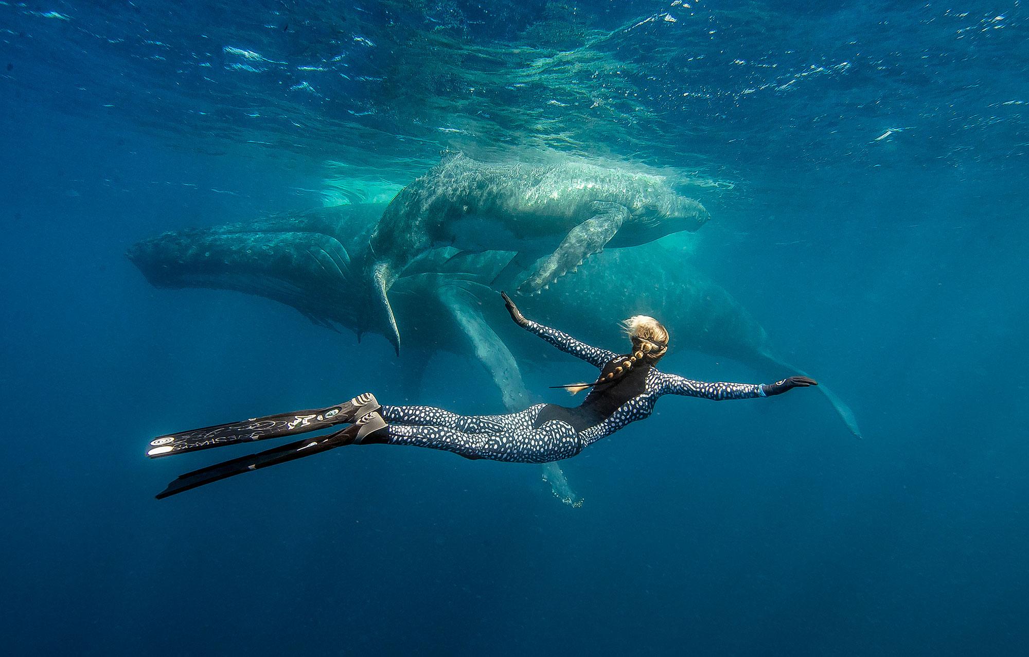 Девушка плавает в гидрокостюме