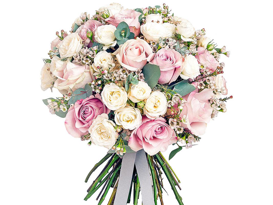 Очень_красивая_роза.jpg