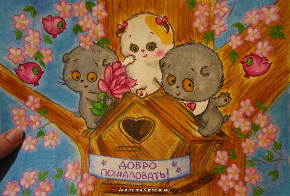 koshechka li-li anastasiya hlimonenko