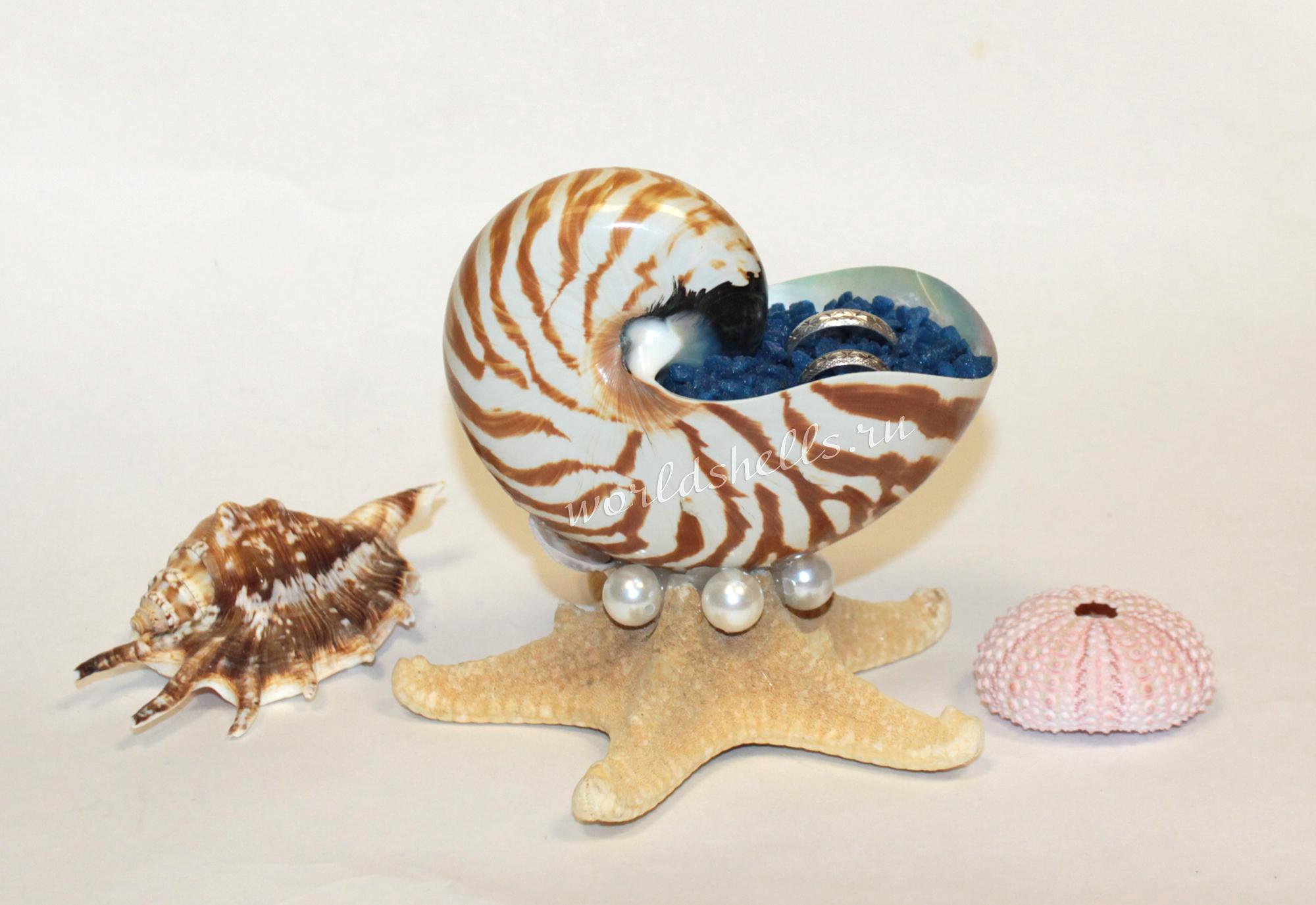 Подставка для колец в морском стиле