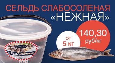 Icefish_web_banner_3__X1.jpg