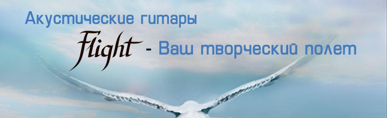 banner_flight.jpg