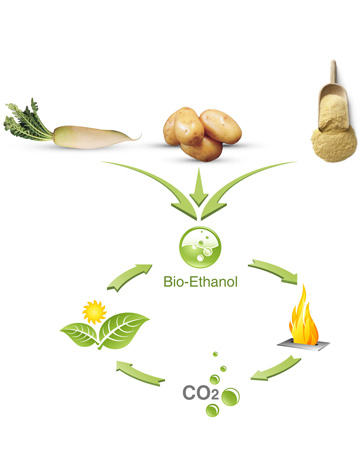 ethanol-fuel-webresize1.jpg