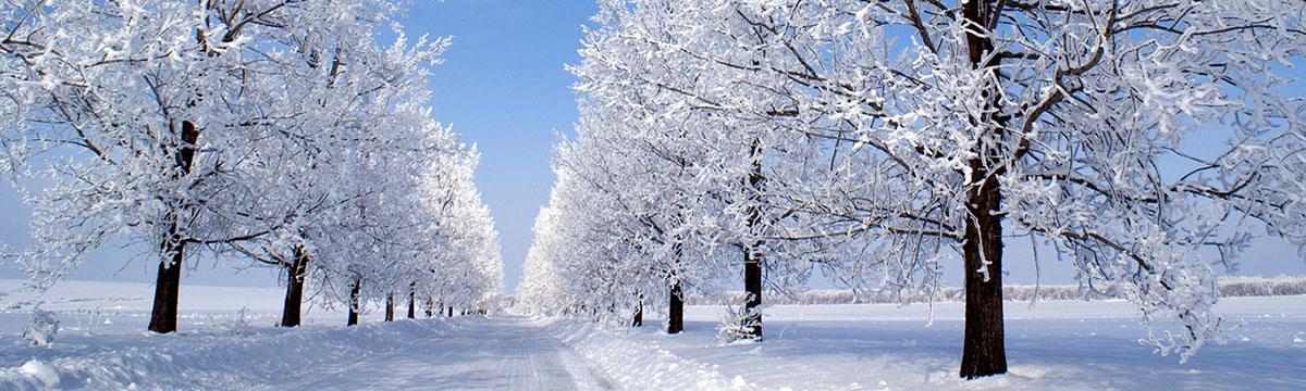Зимняя дорога 5