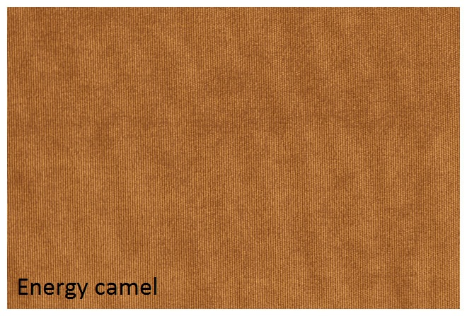 energy_camel.jpg