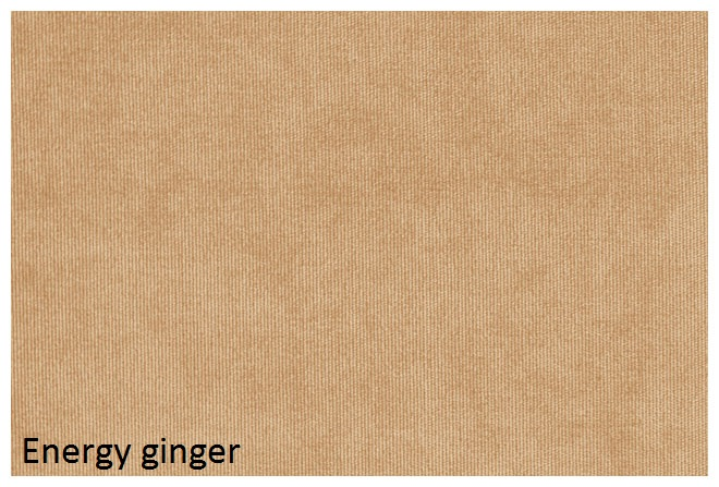 energy_ginger.jpg