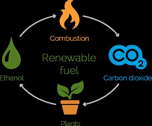 bio-ethanol-diagram-large.png