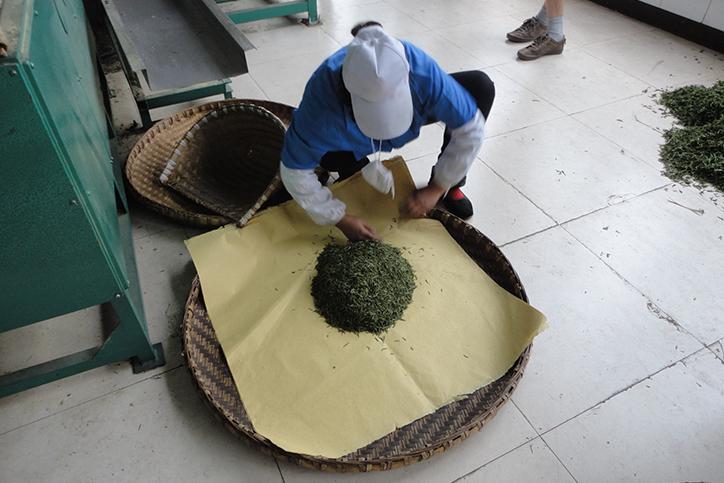 производство желтого чая