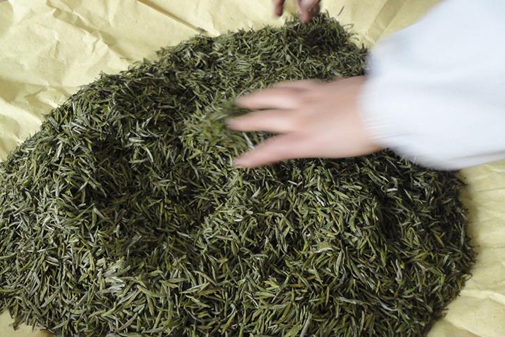 технология производства желтого чая