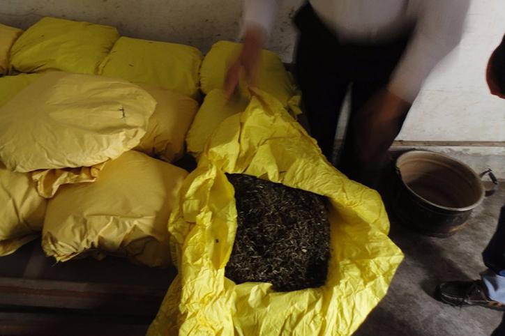 производство желтого чая в Китае