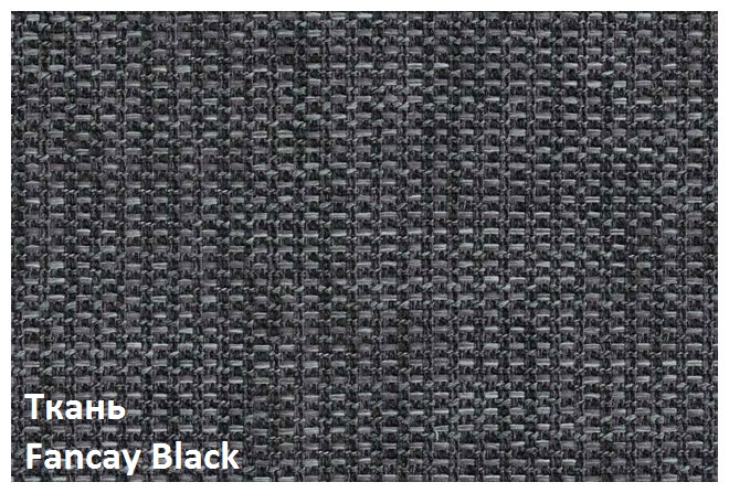Fancay_Black.jpg