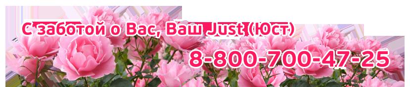 дневной крем купить альпийская роза юст