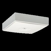 LINESPOT II – аварийное освещение для помещений с подвесными потолками