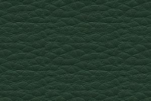 DPCV-11 тем.-зеленая