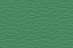счетло-зеленая польская искусст. кожа DPCV-6
