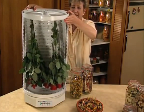 Сушка цветов в сушилке для овощей и фруктов Ezidri Ultra FD1000