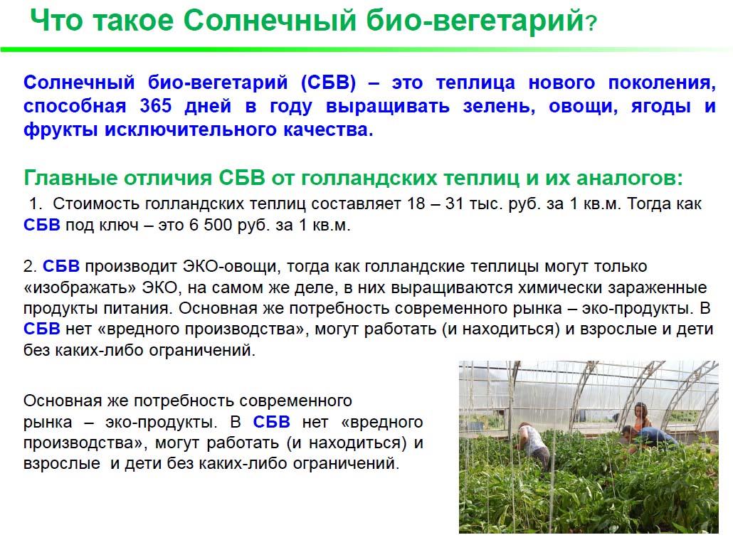 СБВ_ТЭО_1.jpg