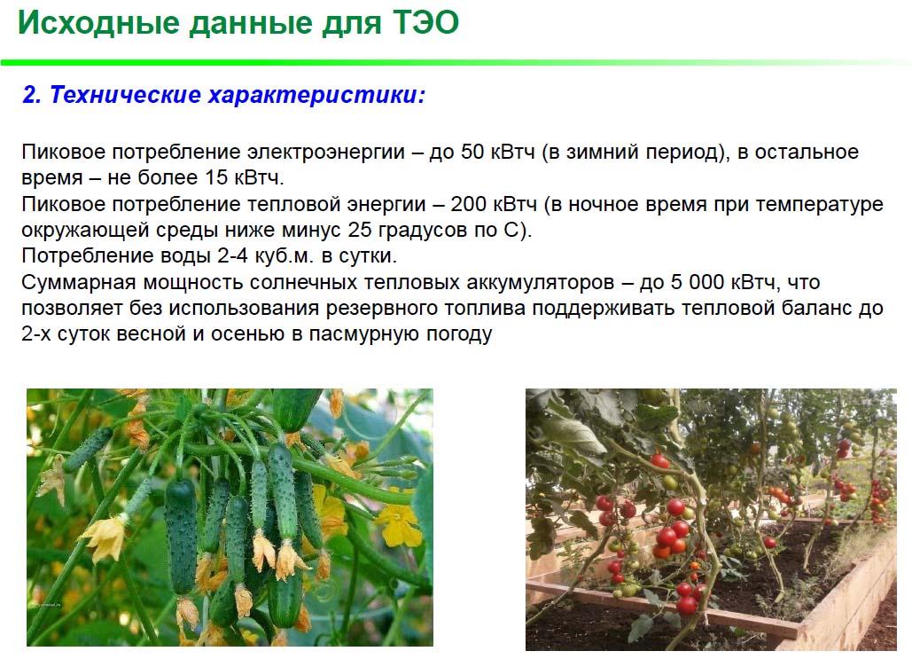 СБВ_ТЭО_4.jpg