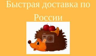 Быстрая доставка по России