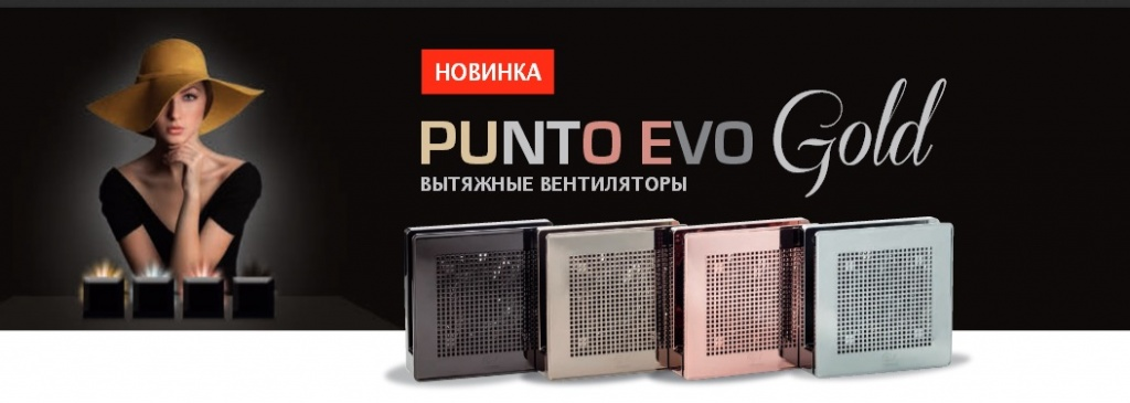 PUNTO EVO GOLD.jpg
