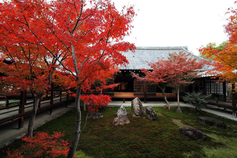 Осенняя Япония