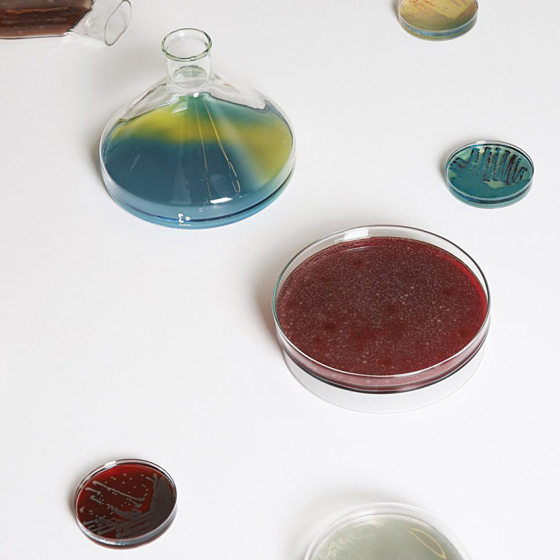 Бактериальные светильники от Jan Klingler