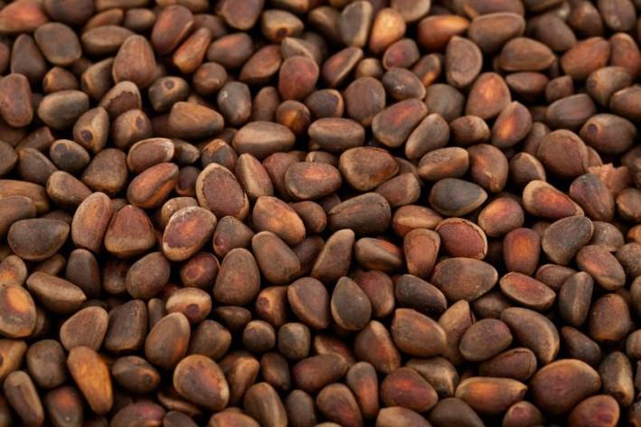 cedar-nuts-3-709x472.jpg